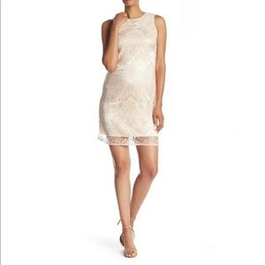 Taylor Sleeveless Sequin Lace Dress in Blush